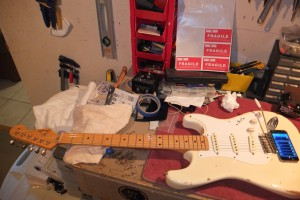 Maple Neck / Alder Body